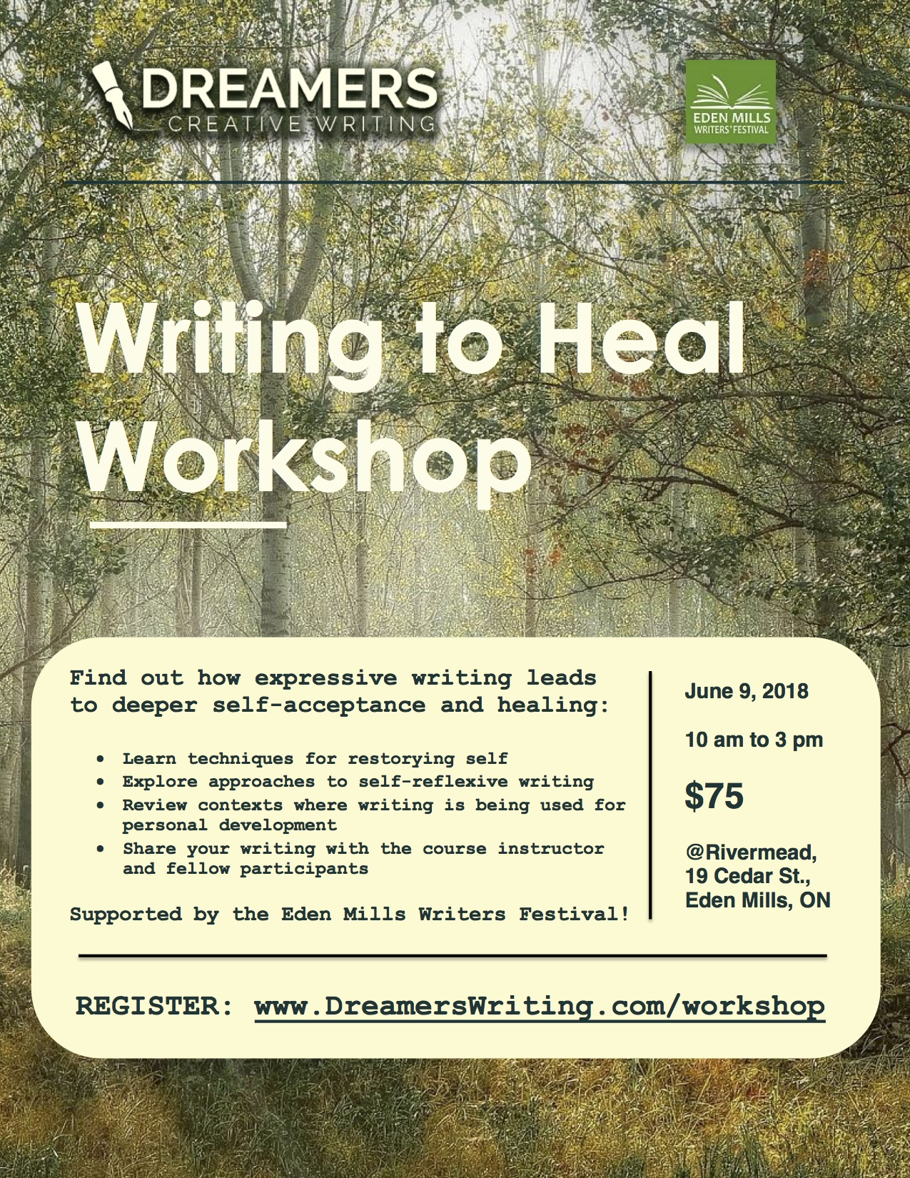 Writing to Heal Poster
